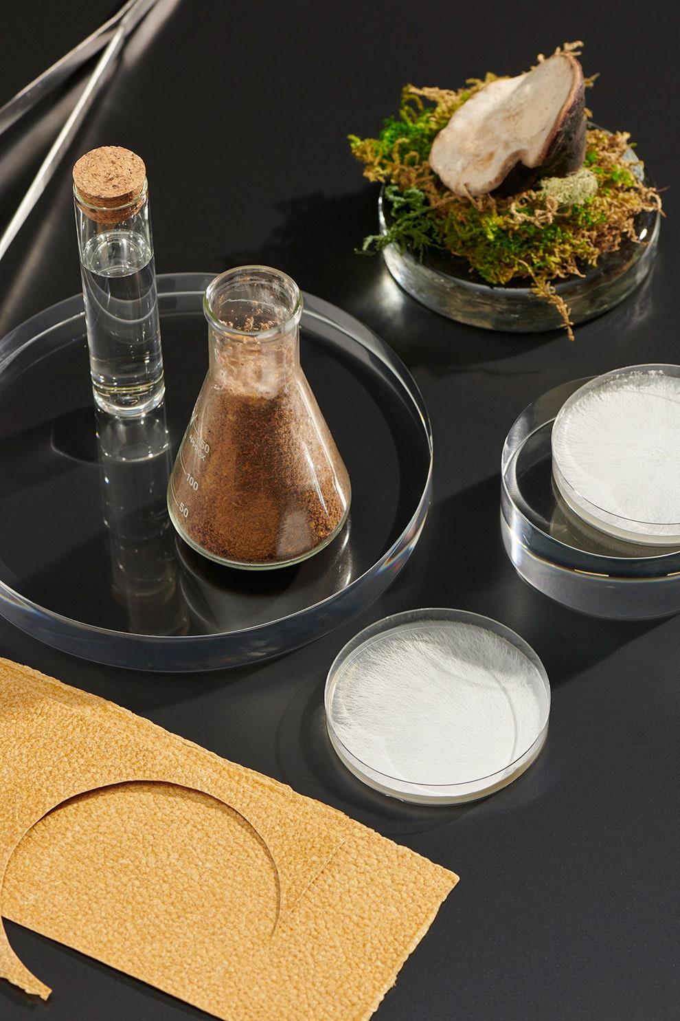 Станет ли веганская кожа, выращенная в лаборатории, материалом будущего